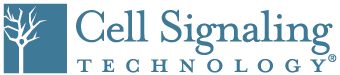 logo-CellSignalingTechnology